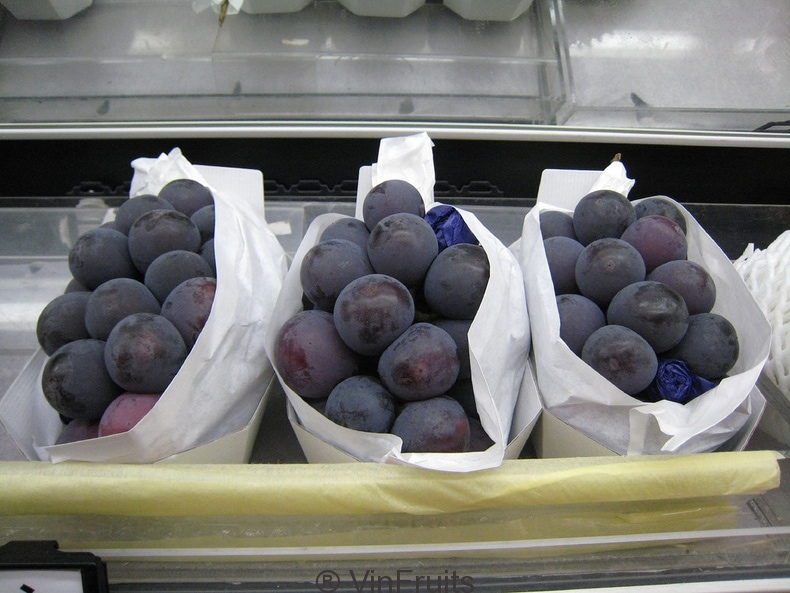 kyoho-Japanese-grapes-vinfruits