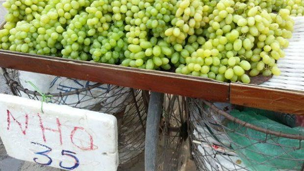 nho-xanh-trung-quoc_vinfruits