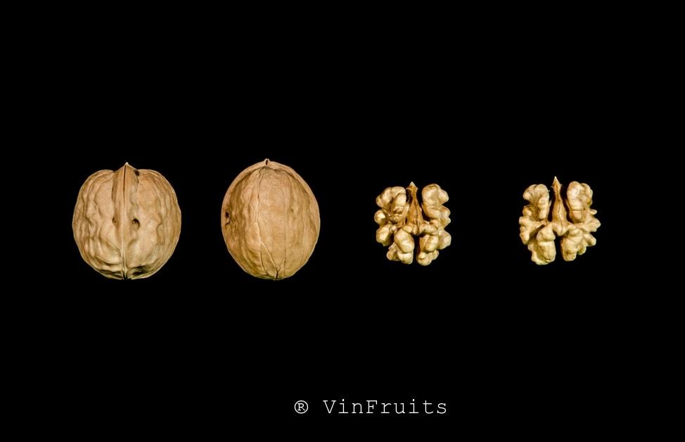 Óc chó Cisco Mỹ - Vinfruits