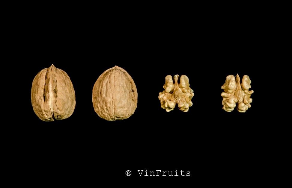 Óc chó Hartley Mỹ - Vinfruits