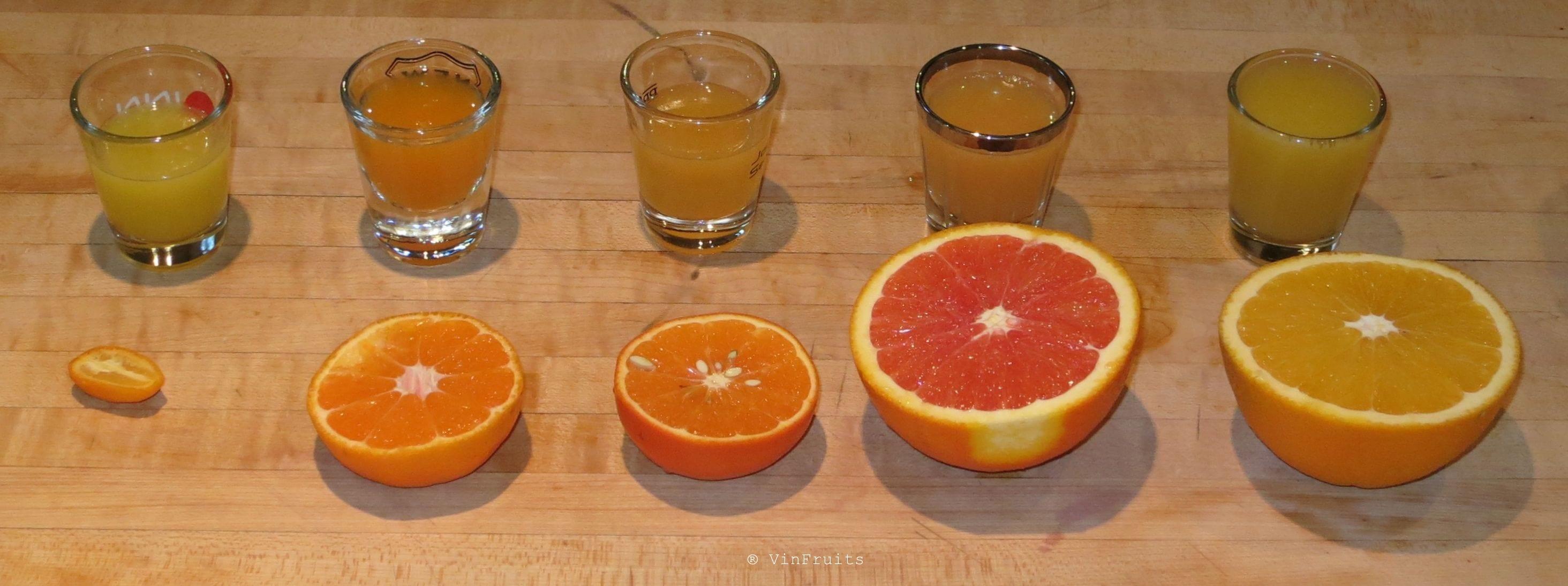 Các loại cam nhập khẩu từ Mỹ - Vinfruits