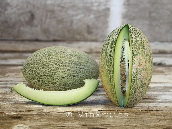 Dưa Afghan Honeydew - Vinfruits