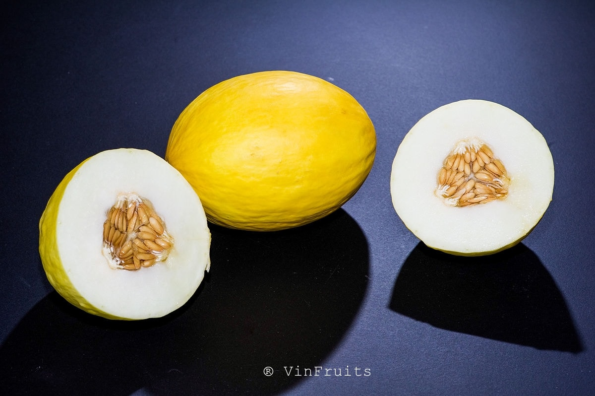 Dưa Canary Melon - Vinfruits