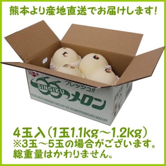Dưa lê Nhật Bản - Vinfruits