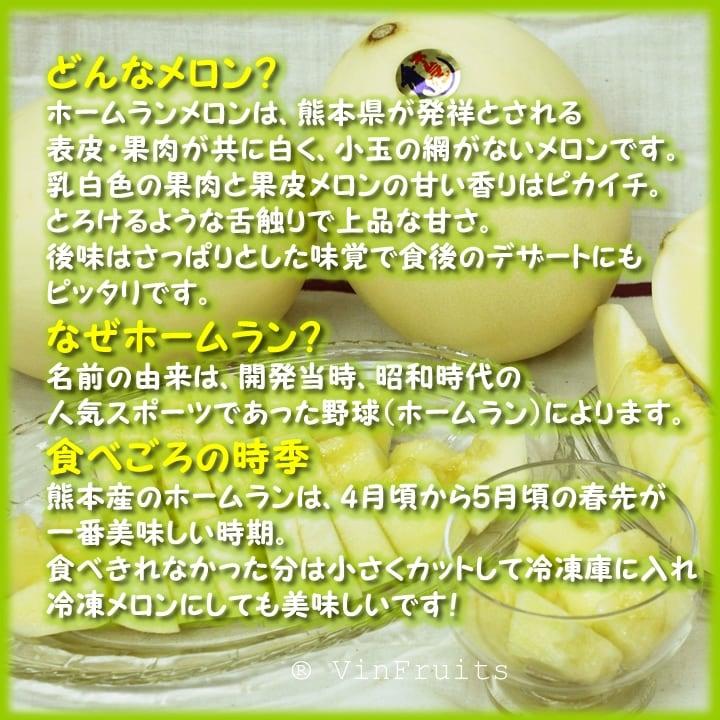 Dưa lê trắng Home Run Nhật Bản - Vinfruits