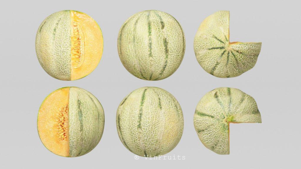 Dưa lông - Vinfruits