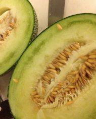 Dưa lưới Higo Green Nhật – Vinfruits