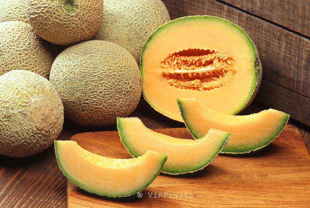 Dưa lưới - Vinfruits