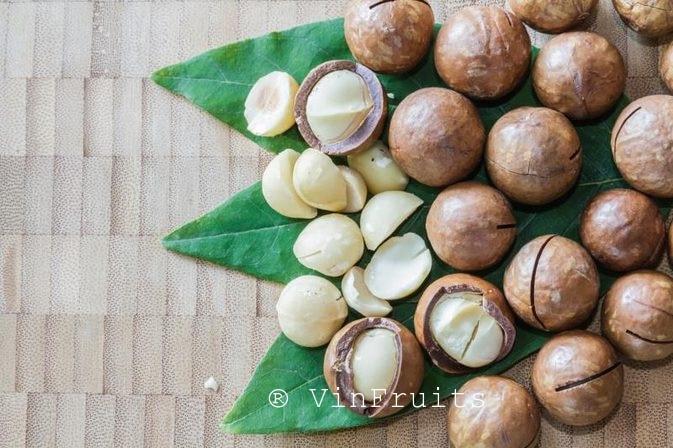 Hạt macca Đà Lạt - Vinfruits