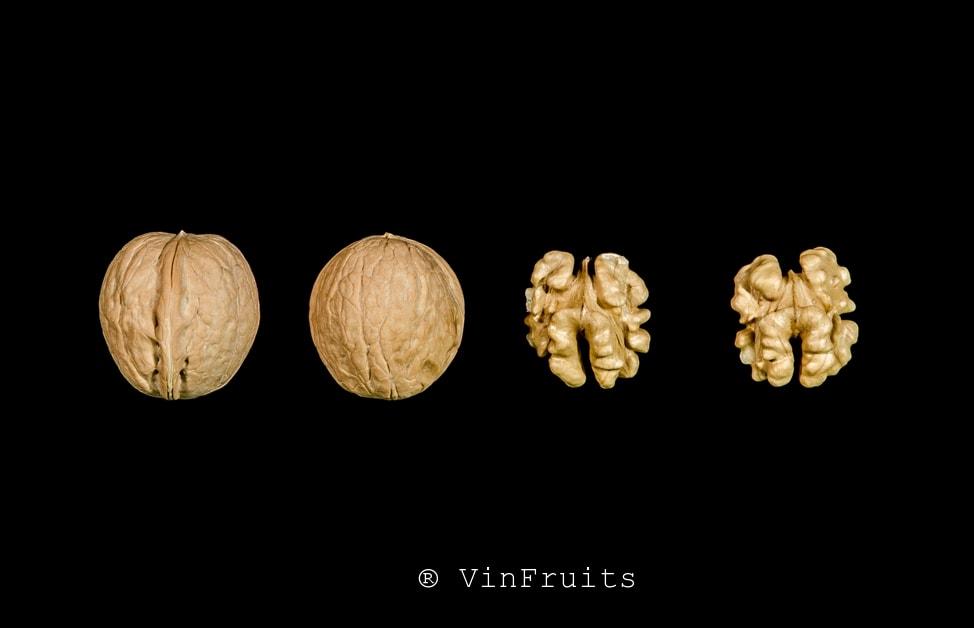Quả óc chó Forde Mỹ - Vinfruits