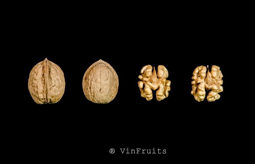 Quả óc chó Payne Mỹ - Vinfruits