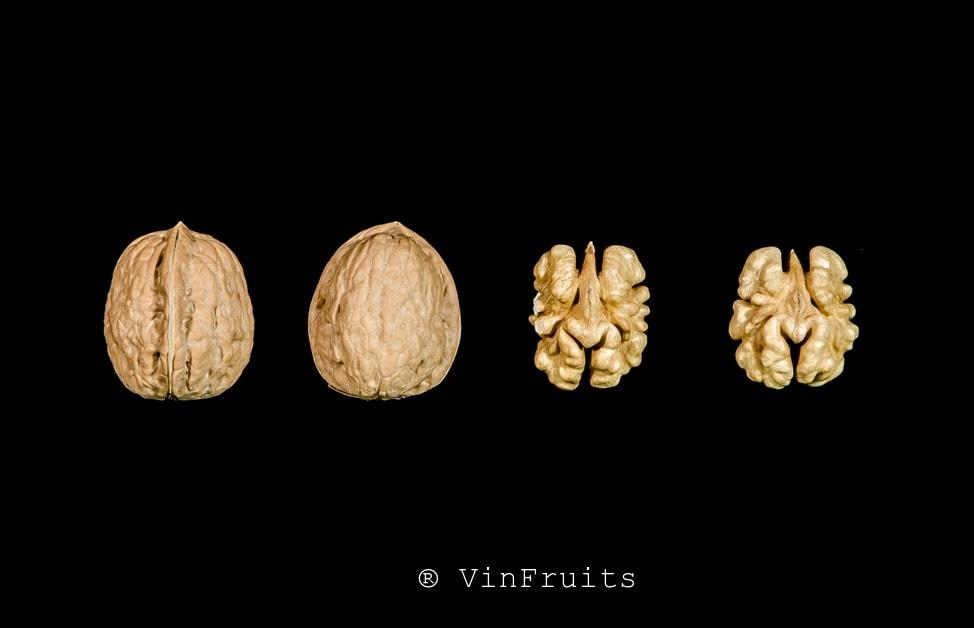 Quả óc chó Serr Mỹ - Vinfruits