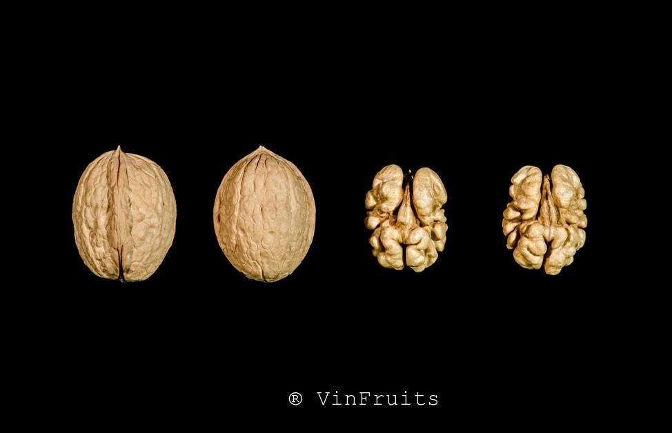 Quả óc chó Sunland - Vinfruits