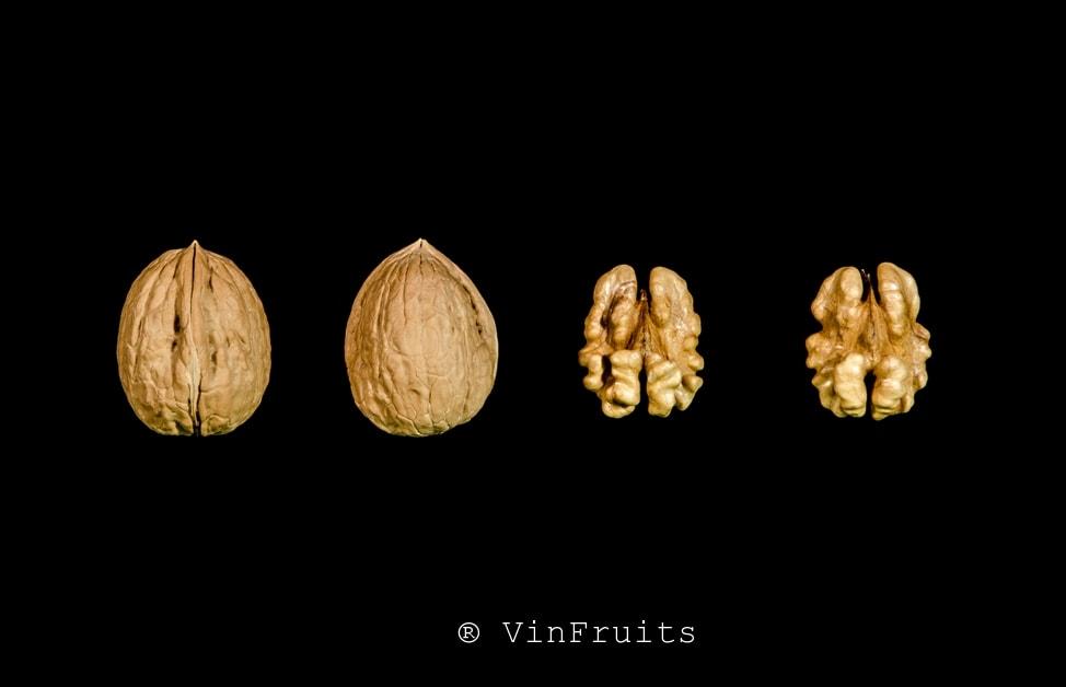 Quả óc chó vina Mỹ - Vinfruits