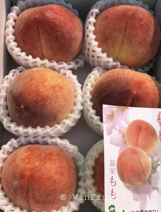Quả đào Nhật Bản - Vinfruits
