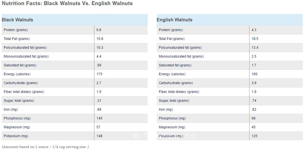 So sanh gia tri dinh dinh duong oc cho den vs oc cho vang - VinFruits