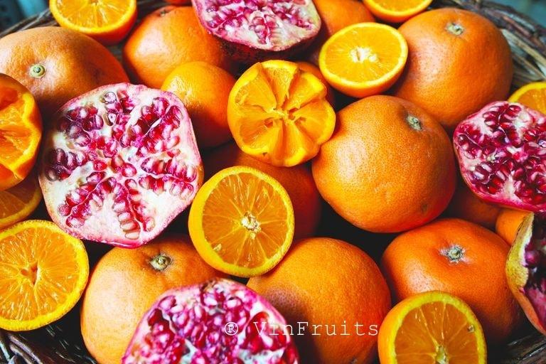 Trái cây nhập khẩu VinFruits tphcm - Vinfruits