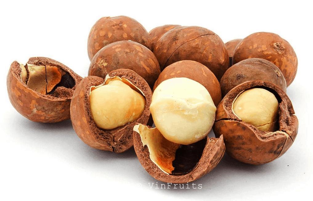 Sữa ngũ cốc hạt mac ca - Vinfruits