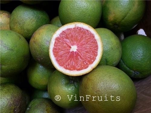 Cam cara Đà Lạt - Vinfruits