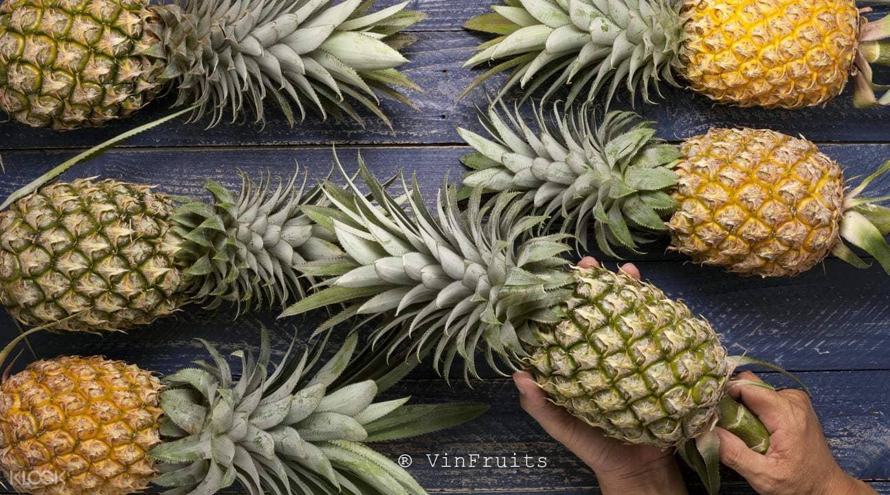 Quả dứa Đài Loan - Vinfruits