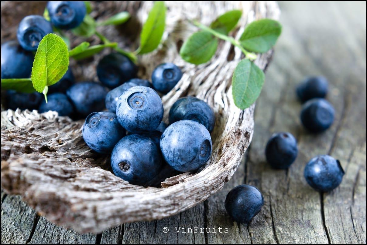 Quả việt quất nhập khẩu - Vinfruits