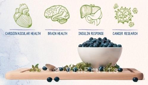 blueberry-Giá trị dinh dưỡng - VinFruits
