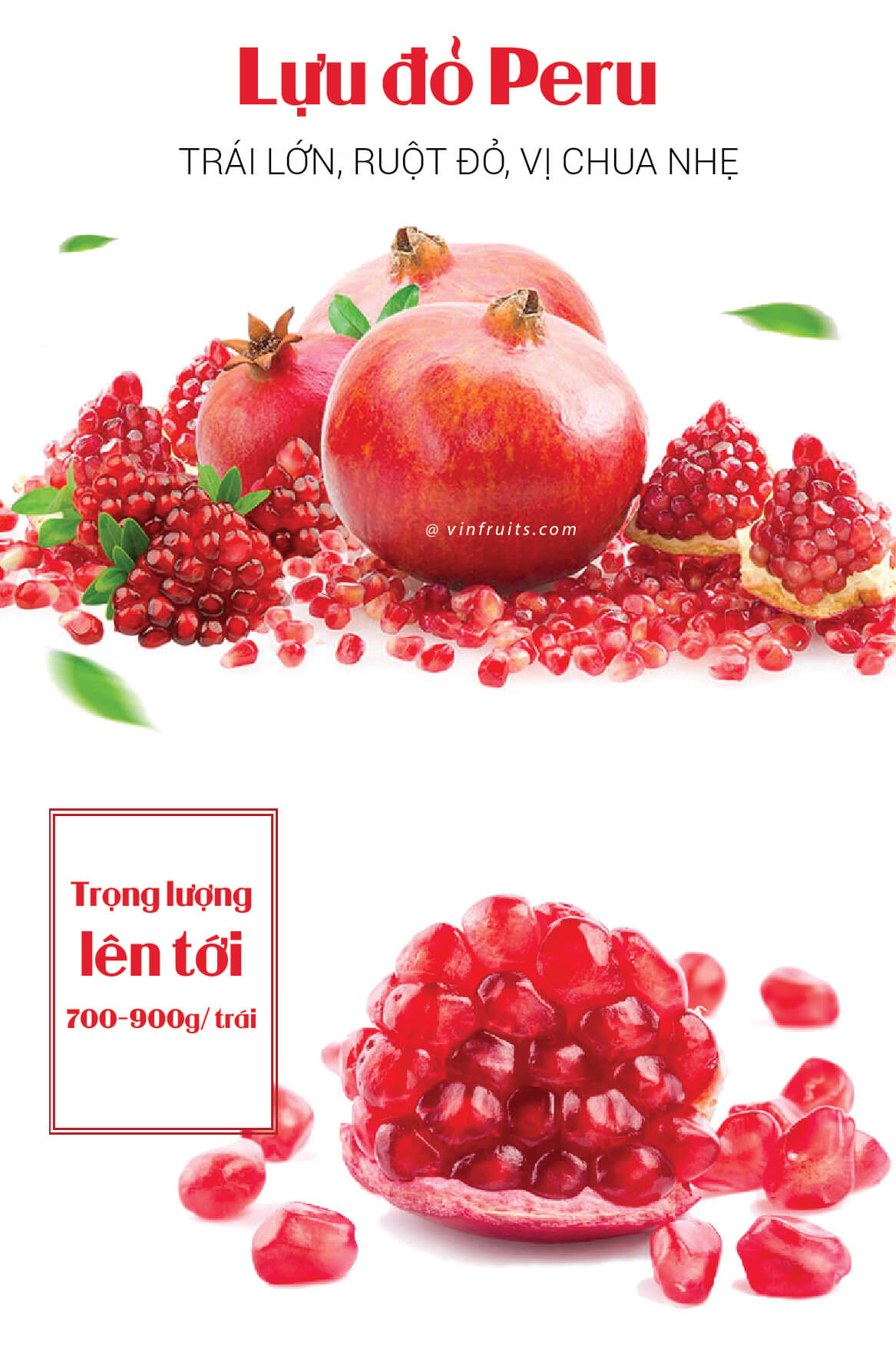 Luu do Peru - vinfruits.com 1
