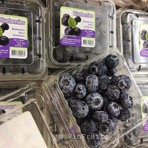 Việt quất Peru - Vinfruits