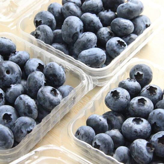 Viet quat nam phi - vinfruits.com 4