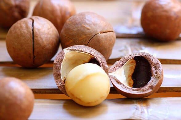 macadamia - Vinfruits