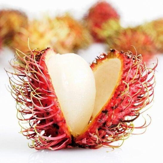 Chôm chôm Thái - vinfruits.com 2