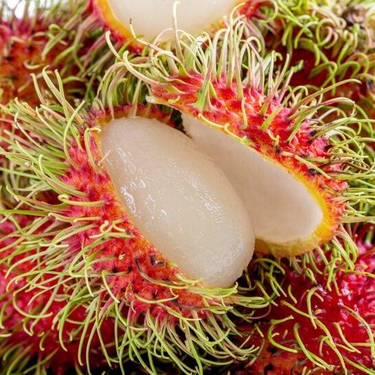 Chôm chôm Thái - vinfruits.com 6