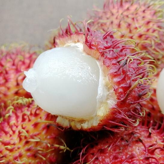 Chom chom nhan VN - vinfruits.com 1