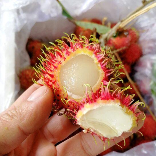 Chom chom nhan VN - vinfruits.com 4