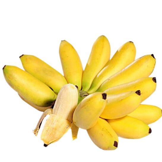 Chuoi cau - vinfruits.com 1