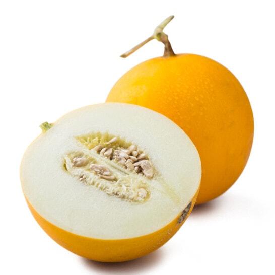 Dưa lưới vàng - vinfruits.com 1