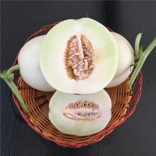 Dua le trang - vinfruits.com 6