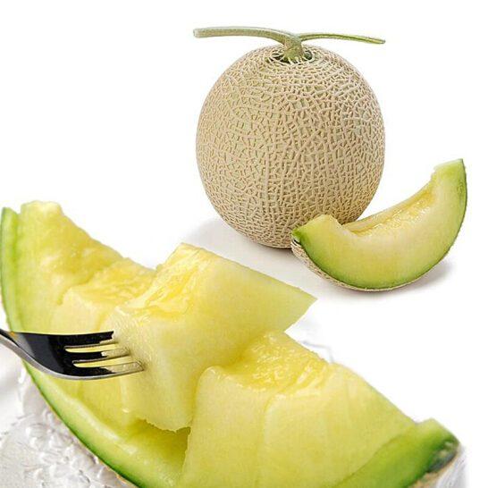 Dua luoi giong Nhat - vinfruits.com 2