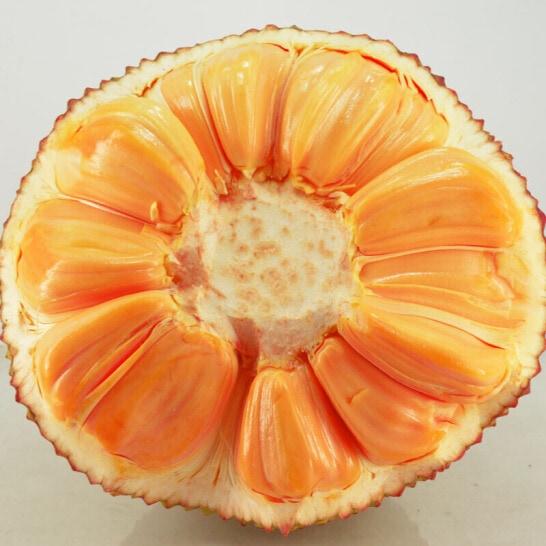 Mít Thái Lan - Vinfruits.com 3