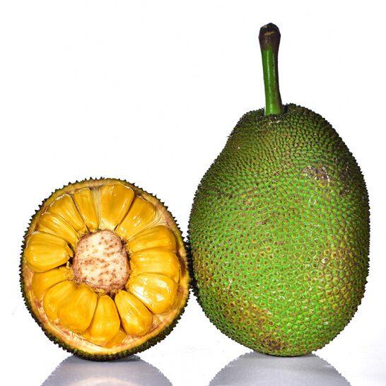 Mít dai VN - vinfruits.com 2