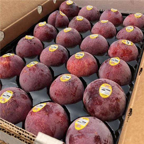 Man den My - vinfruits.com 3