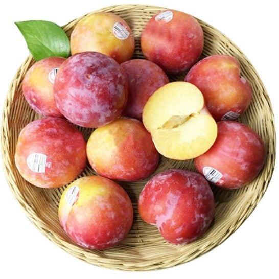 Man do Uc - vinfruits.com 1