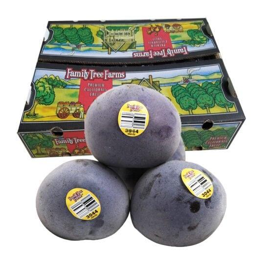 Man khung long den My - vinfruits.com 1