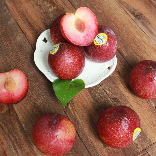 Man khung long do My - vinfruits.com 3
