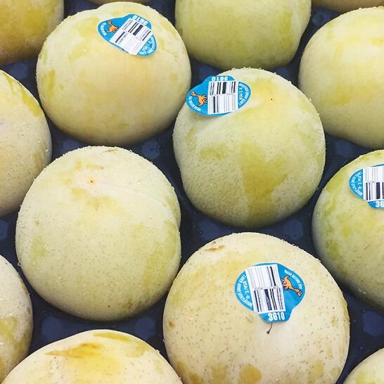 Man khung long xanh My - vinfruits.com 3