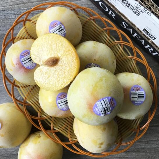 Man khung long xanh My - vinfruits.com 4