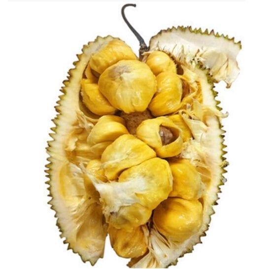 Mit To Nu - vinfruits.com 5