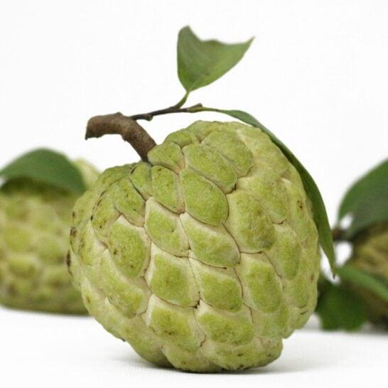 Na Dong Banh Lang Son - vinfruits.com 3