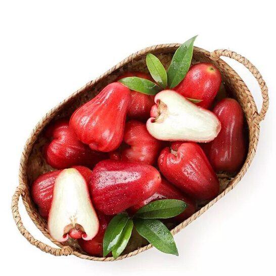 Quả doi (mận) An Phước - vinfruits.com 3