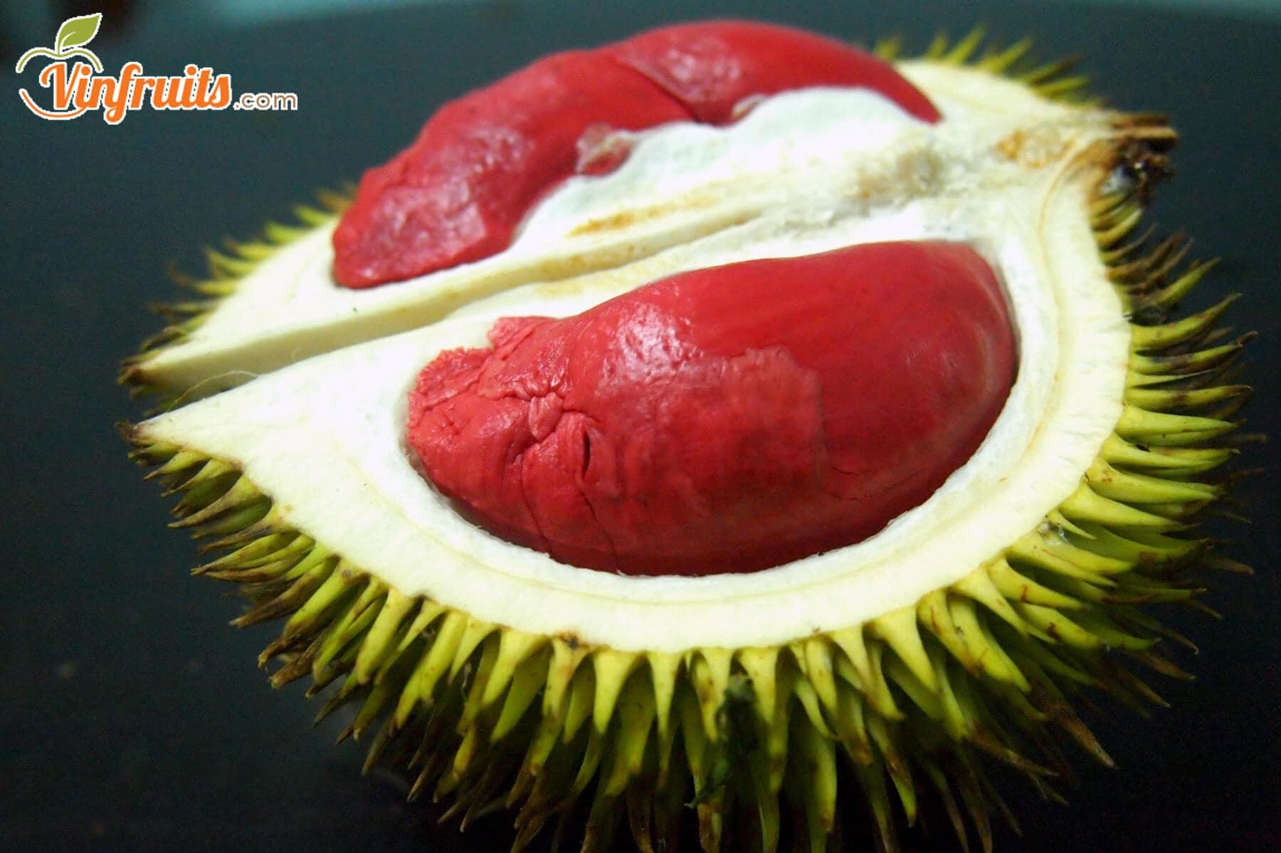 Sầu riêng ruột đỏ Malaysia - Vinfruits